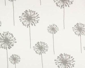 dandelion white storm