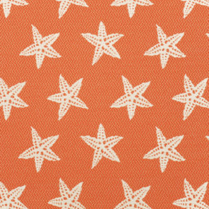 Outdoor Starfish Firecracker
