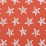 Outdoor Starfish Firecracker -Grade B